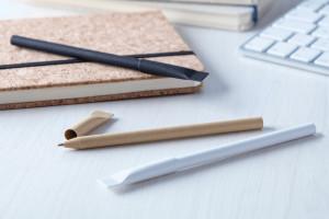 Papyrus   pen