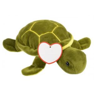 Plüschschildkröte ALBERT